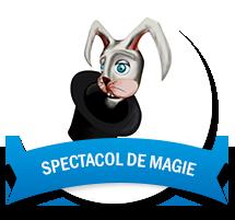 Spectacol de magie pentru copii Cluj Napoca